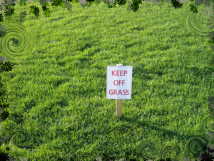 keep_off_the_grass_by_refocused
